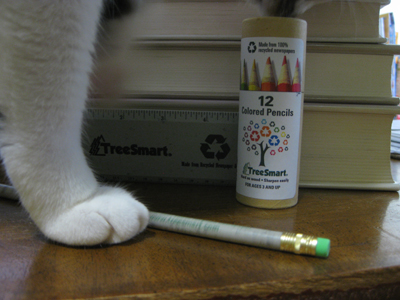 cat-invading-colored-pencils