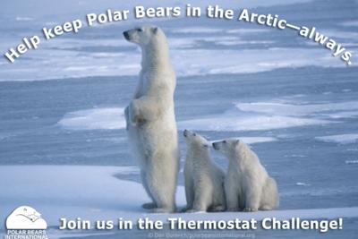 thermostat-challenge-1