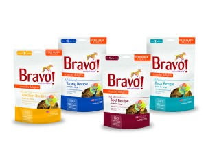 BravoTreat_Group_4C