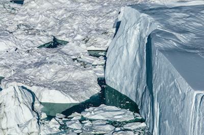 arctic-tuft